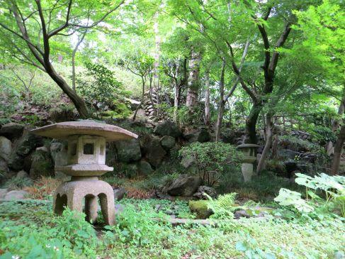 todoroki nature japan tokyo