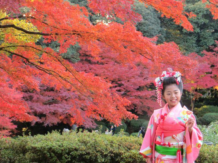 tokyo japan autumn fall