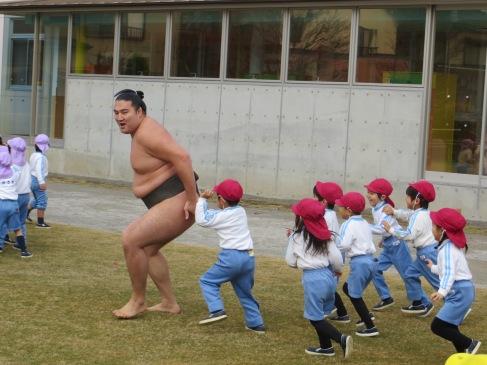 sumo kindergarten teaching tokyo