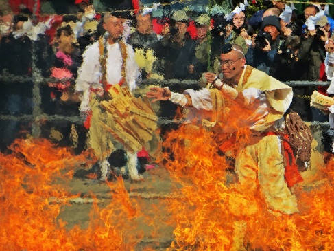 Hiwatari Matsuri: Mount Takao Fire Walkign Festival Tokyo