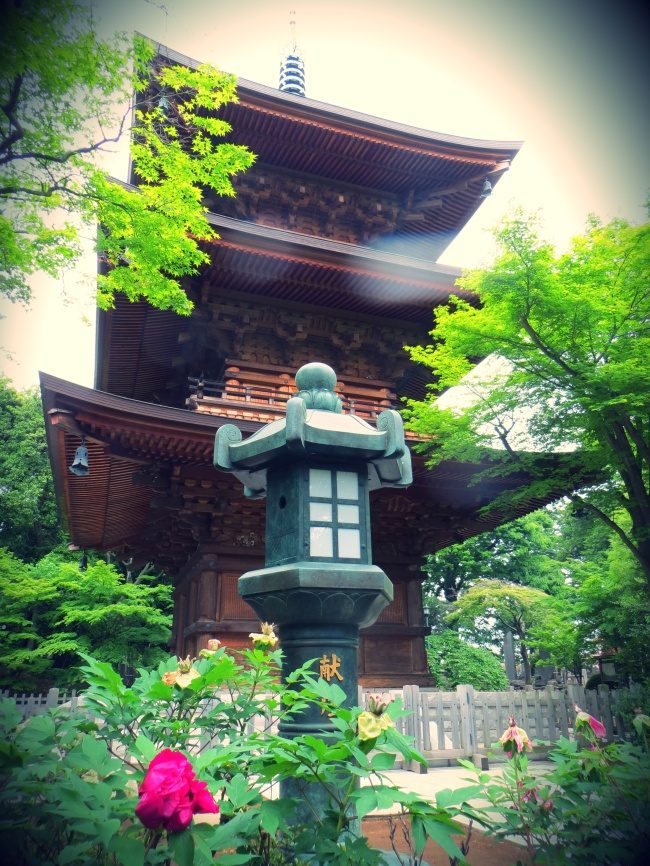 tokyo temple gotkuji cats