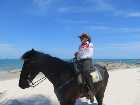 Hua Hin horse
