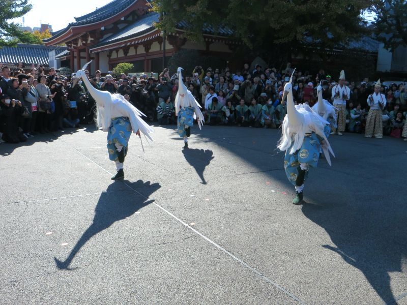 shirasagi-no-mai-white-heron-dance-12