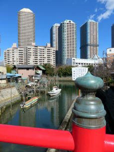 Tsukishima in the sun