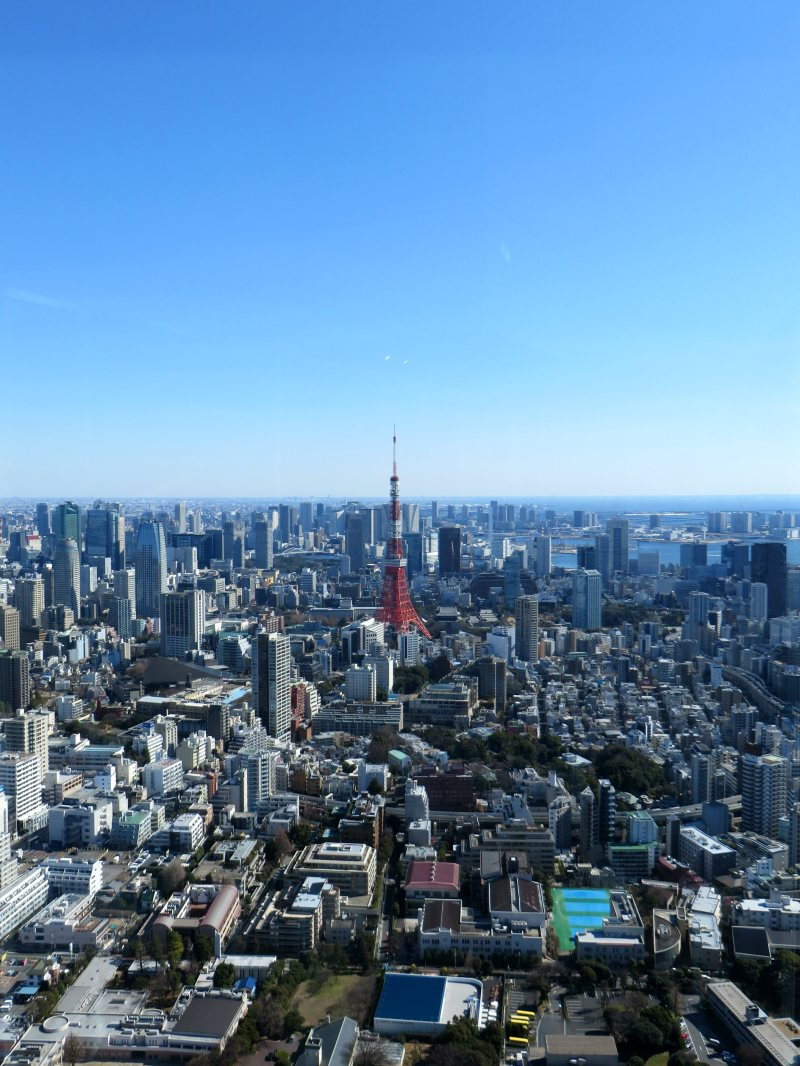 view-of-tokyo-tower