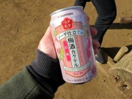 setagaya-plum-festival-hanegi-park-10
