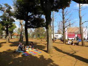 setagaya-plum-festival-hanegi-park-16