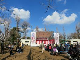 setagaya-plum-festival-hanegi-park-9