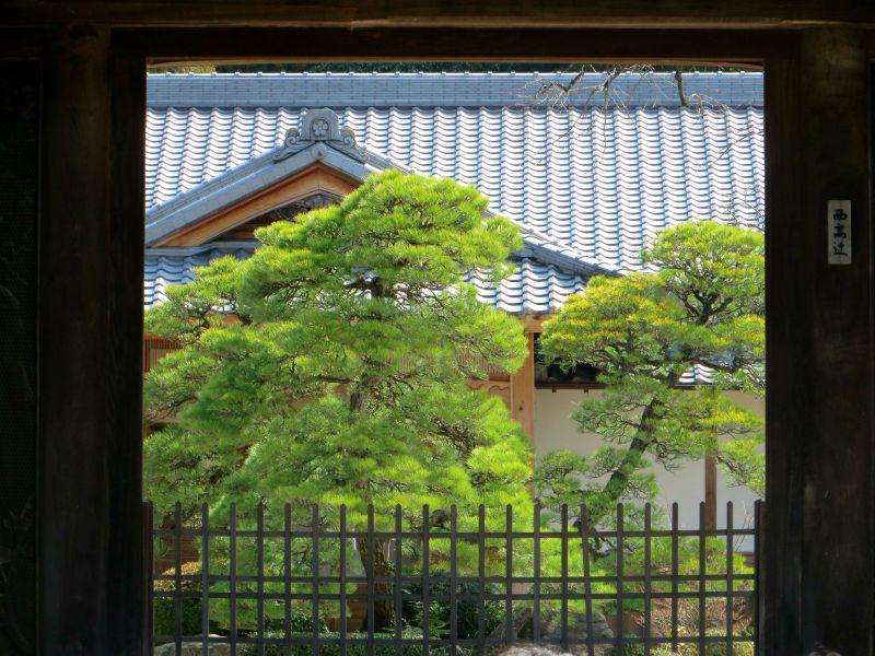 Dazaifu garden gate 2
