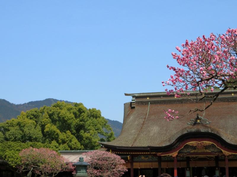 Dazaifu tenamn gu temple