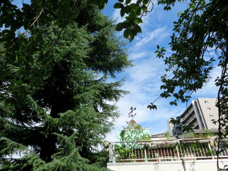 Akabane apartments Tokyo trees