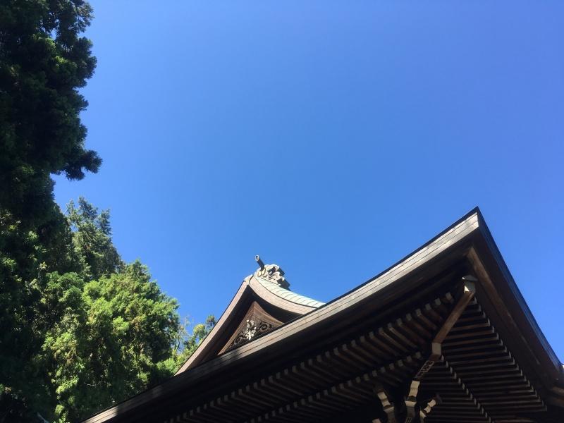 Hokokuji Bamboo Kamakura 5