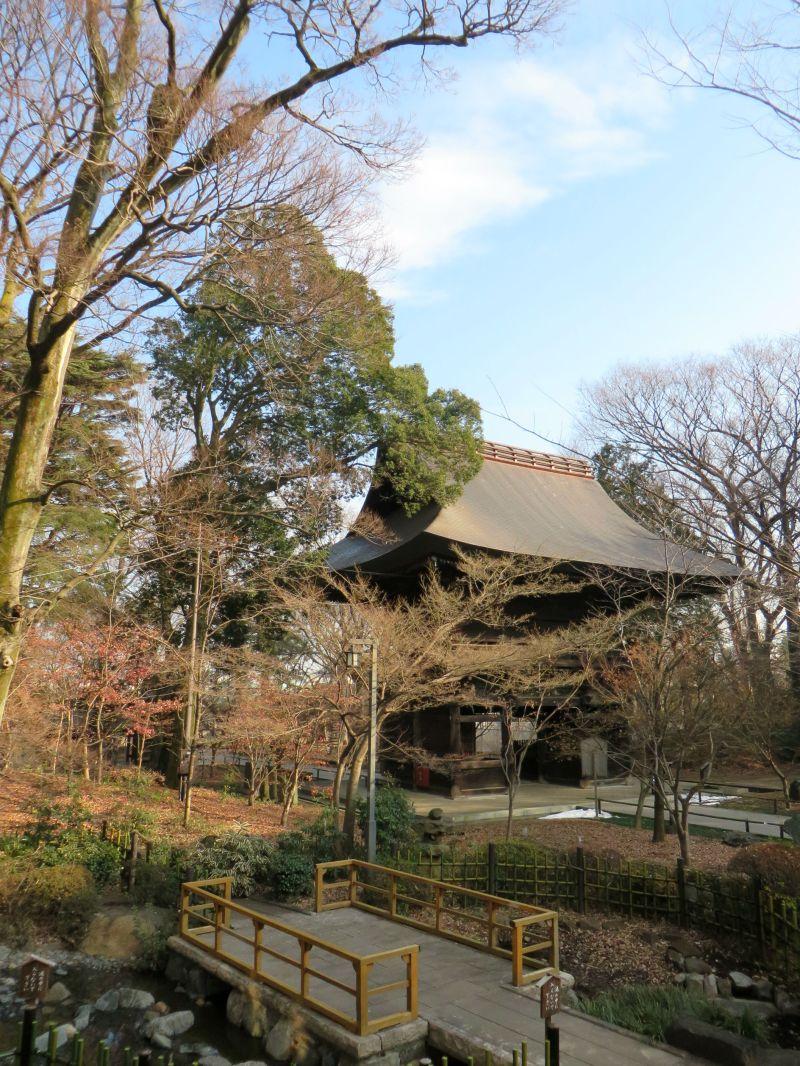 Kuhonbutsu Joshinji Temple, Tokyo 4