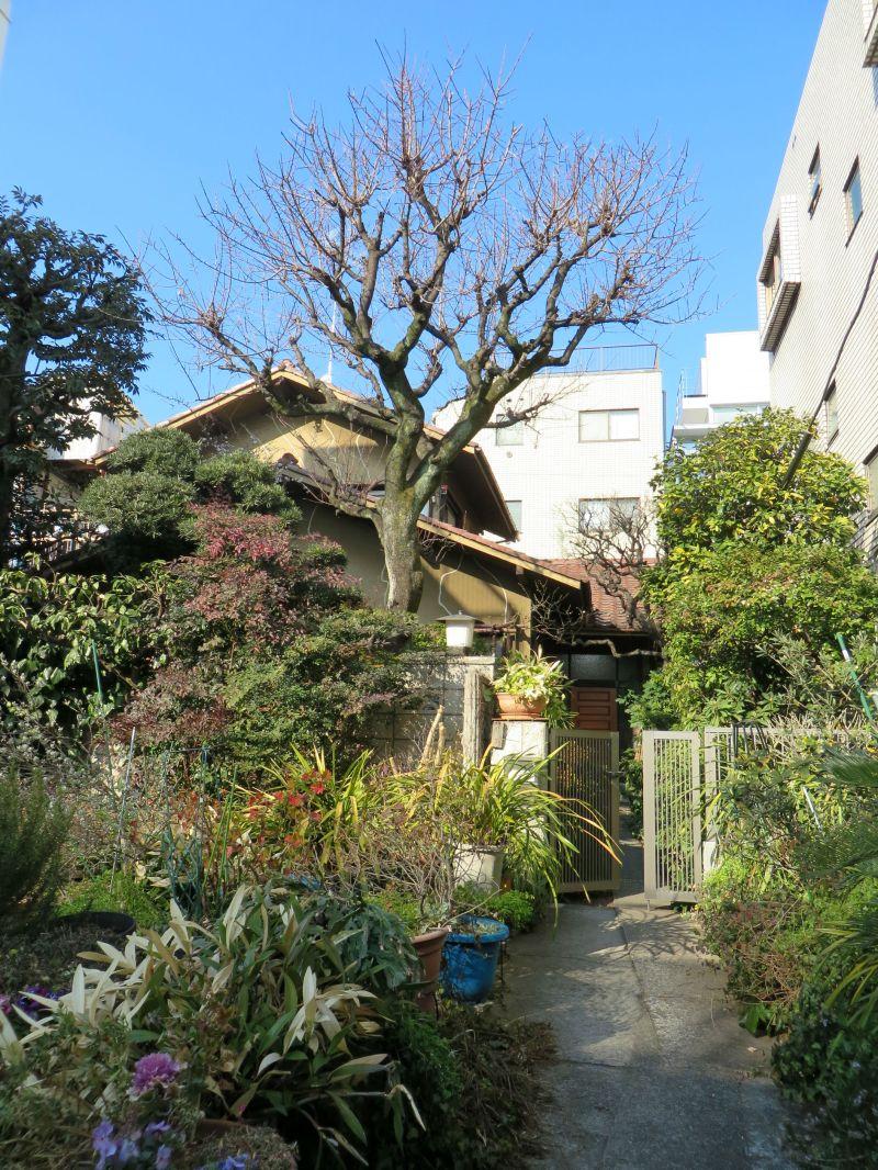 Oyamadai house Tokyo