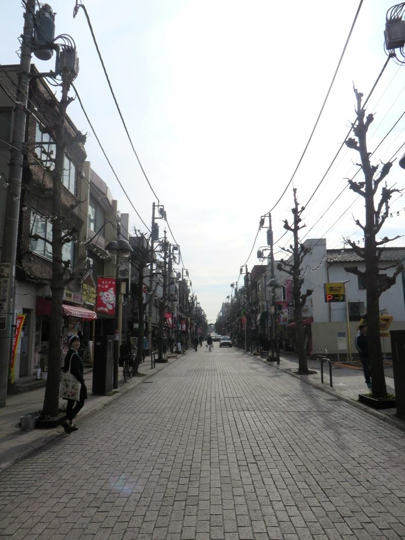 Oyamadai Tokyo street