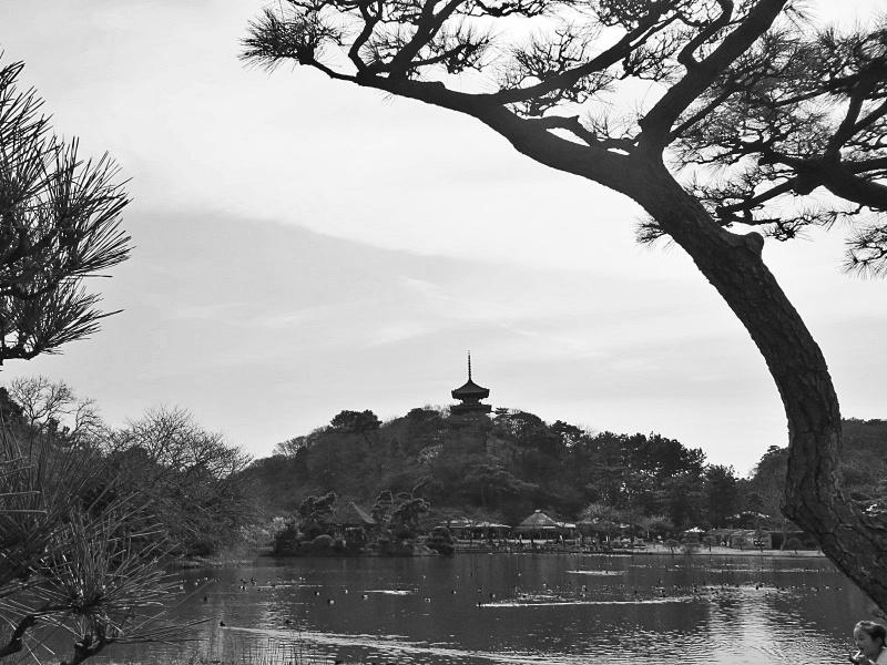 Sankeien Garden Yokohama 1