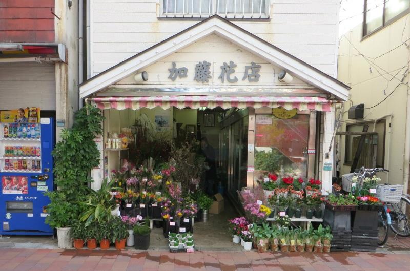 Sugamo, Tokyo 15