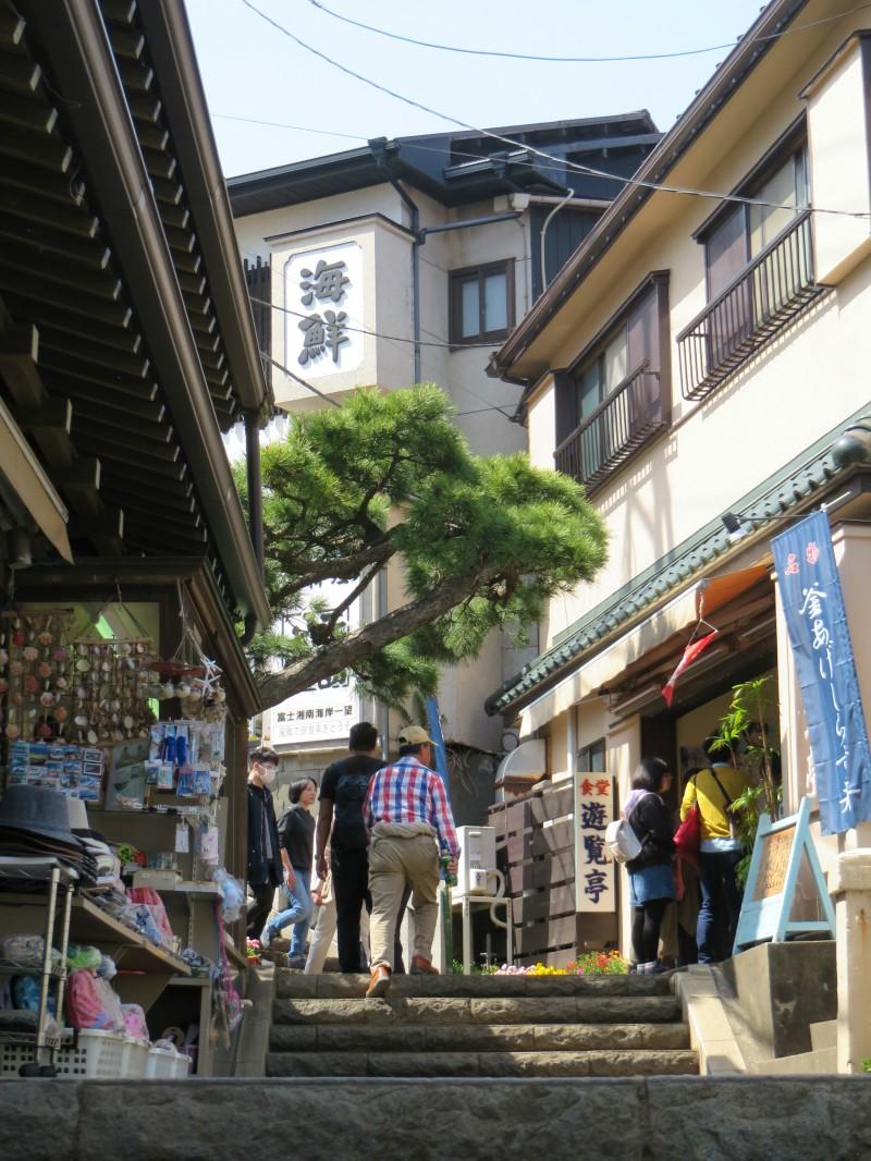 Enoshima Tokyo 10
