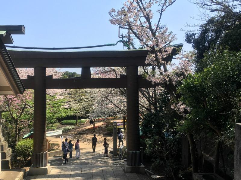 Enoshima Tokyo 12