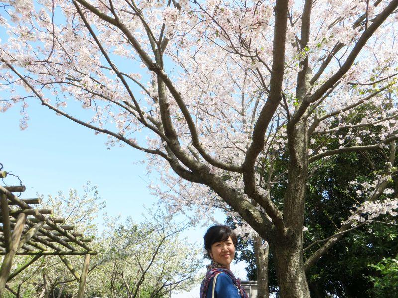 Enoshima Tokyo 3