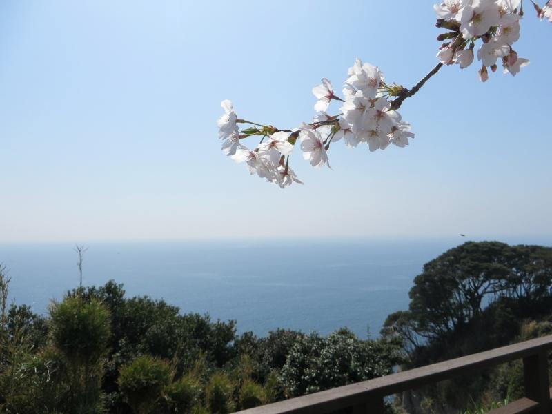 Enoshima Tokyo 8