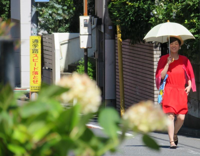 Ikuta Ryokuchi Park 生田緑地 6