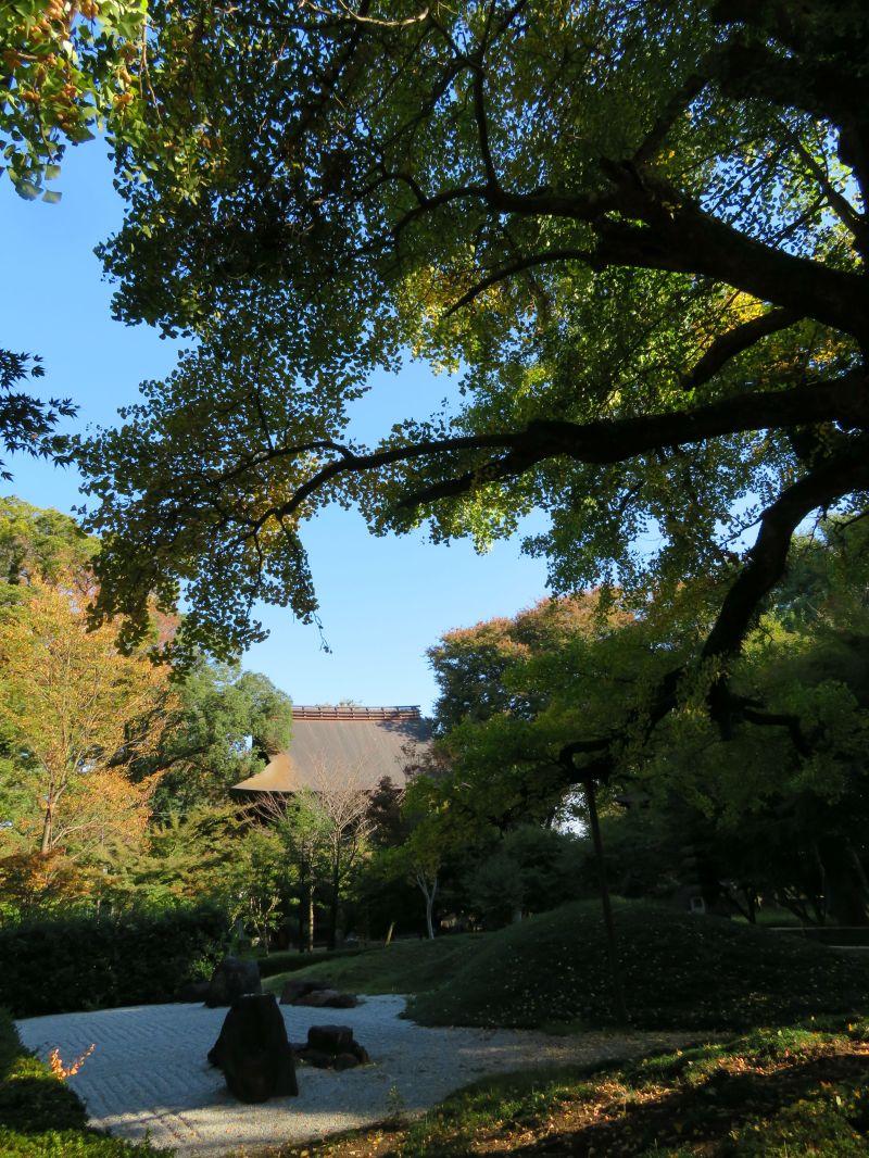 Zen Tokyo Temple