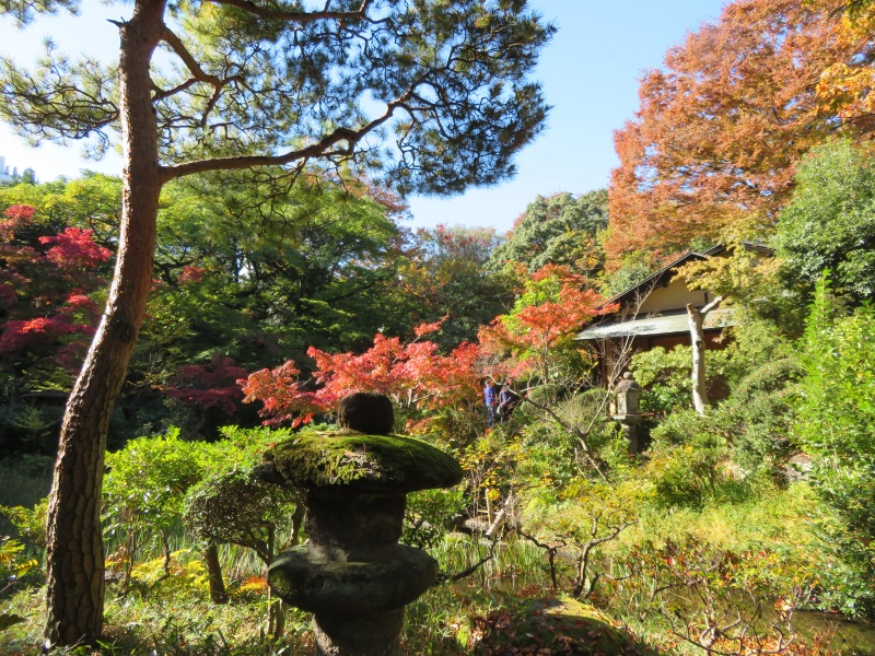Nezu Garden Museum Tokyo 4 Autumn Fall