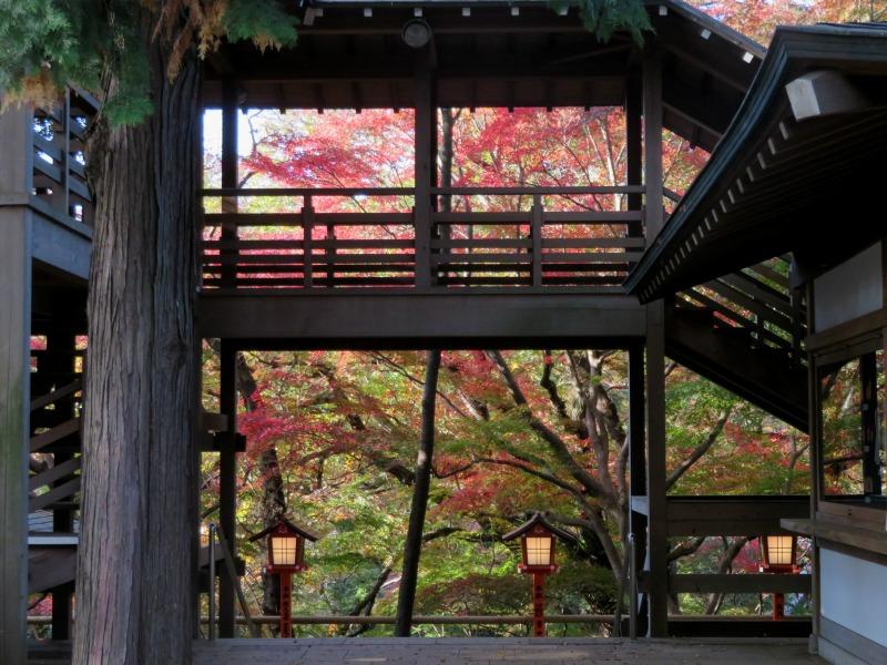 Todoroki Valley Tokyo Autumn Fall 4