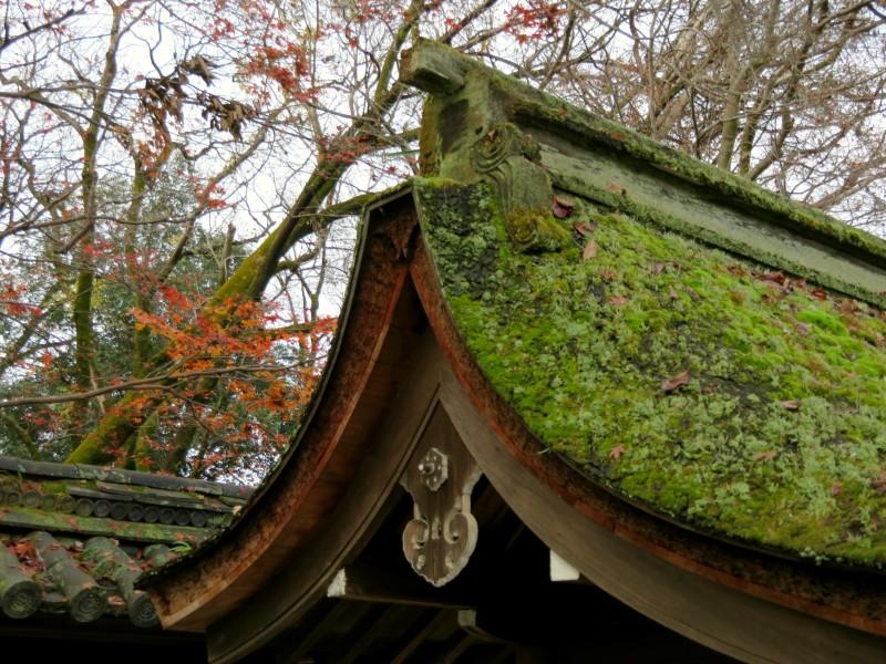 kawai-jinja shrine kyoto 2