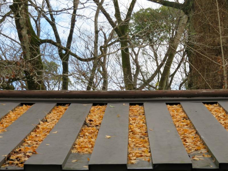 kawai-jinja shrine, kyoto 3