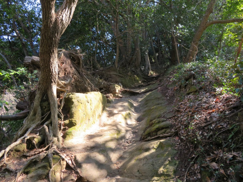 Ten-en hiking trail kamakura 10