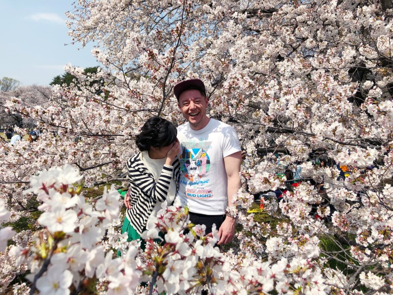 Sakura cherry blossoms Tokyo 2