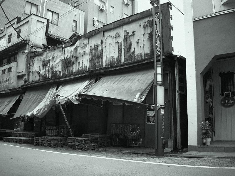 YASHICA - digiFilm B&W