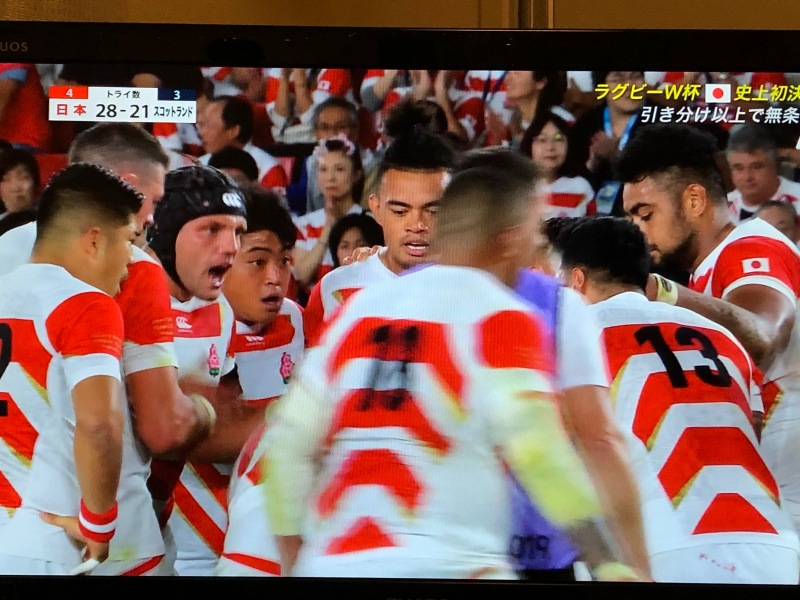 Japan Rugby World Cup TV