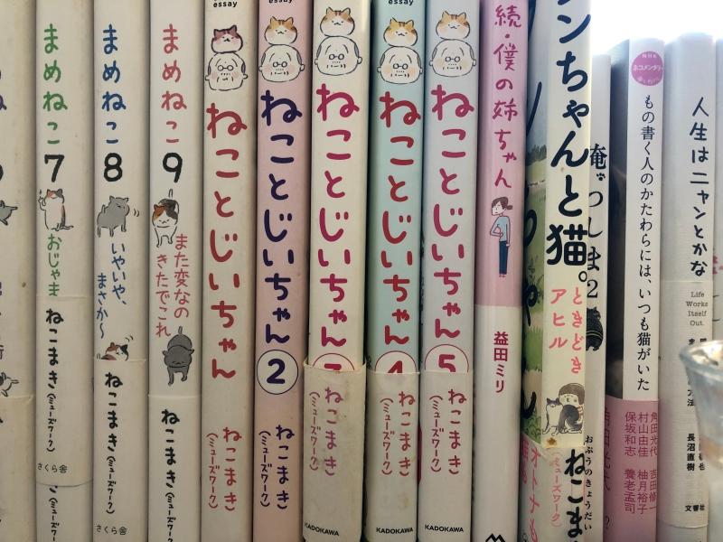 manga books in cafe Tokyo
