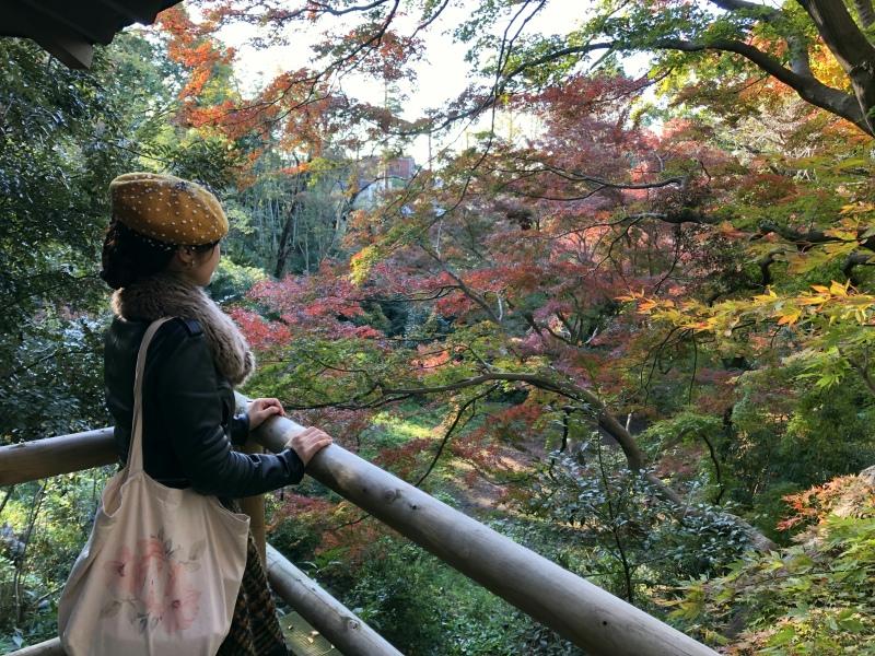 IKIMASHO Todoroki Tokyo