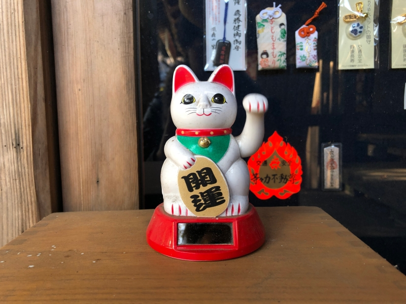 Nodding cat Todoroki