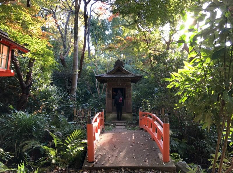 Todoroki Valley lush Tokyo