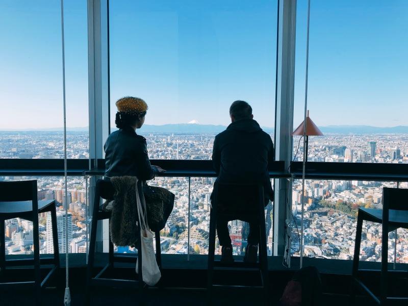 Tokyo City View Mori Fuji