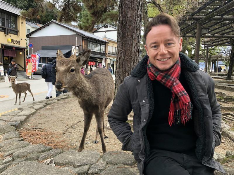 Miyjajima Hiroshima deer 1