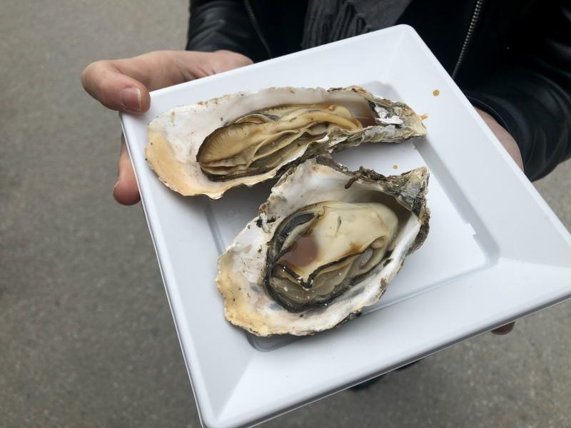 Miyjajima Hiroshima oysters