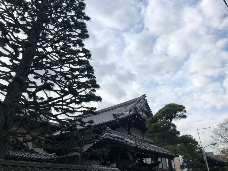 Temple Hiroo Tokyo 3