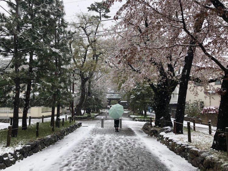 snow tokyo temple street