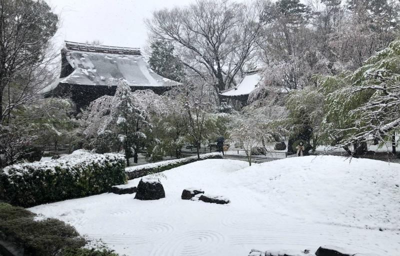 snow tokyo temple