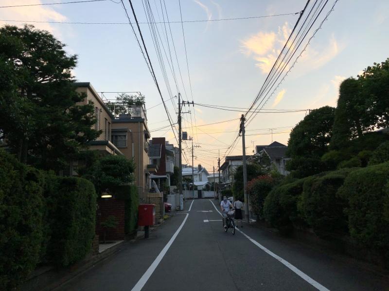 Tokyo suburbs beautiful dusk